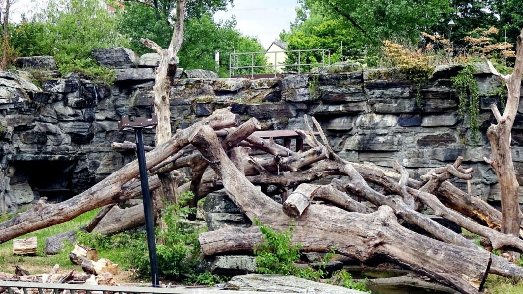 kölner-zoo-3@05x
