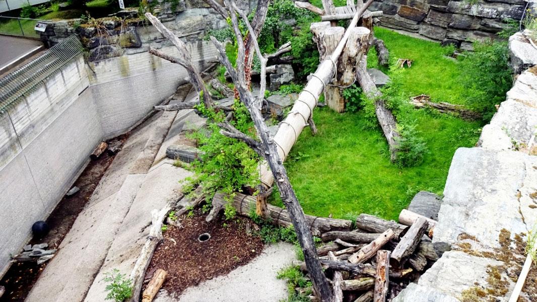 kölner-zoo-4@05x
